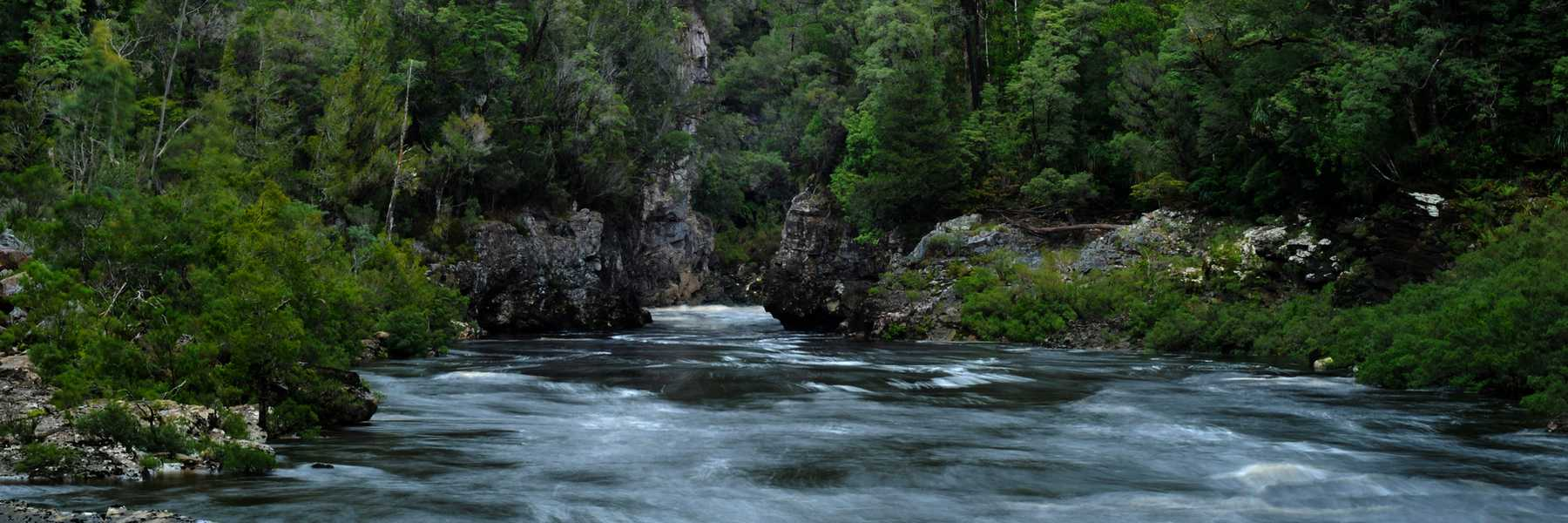The Franklin River above Newlands Cascades